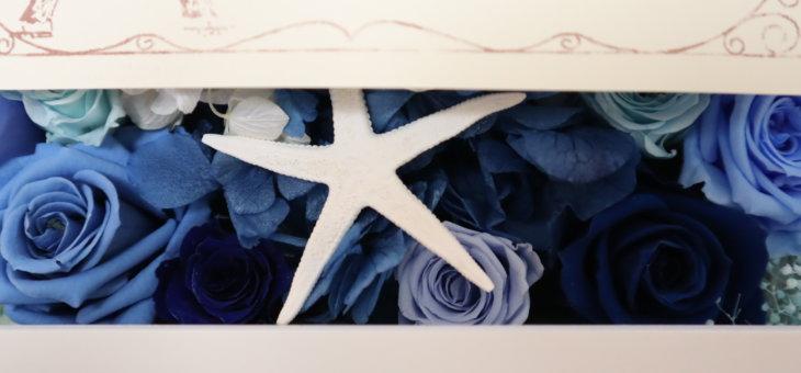 青い花ってどんなものがある?プリザーブドフラワーならではの色をご紹介